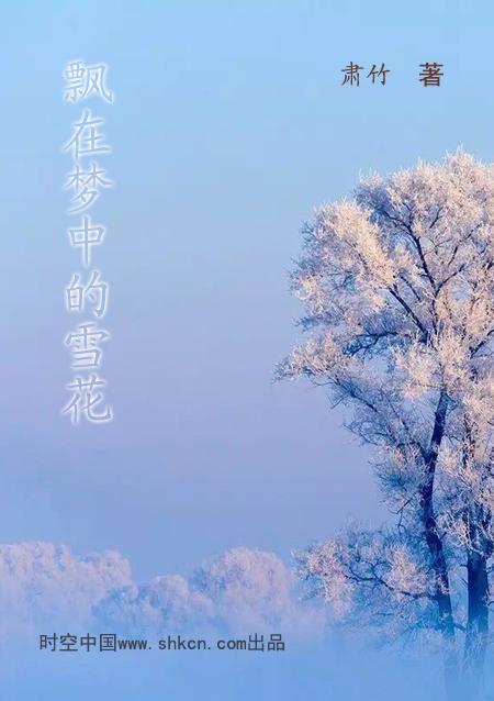肃竹时空飘在梦中的雪花